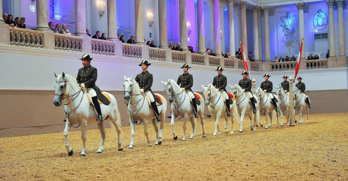 Seminar An Der Spanischen Hofreitschule Mein Pferd Mein Freund