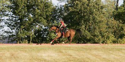 imago_Rau 06586276h_opt Bildnummer: 06586276  Datum: 26.09.2010  Copyright: imago/Rau Bildnummer: 06586276  Datum: 26.09.2010  Copyright: imago/Rau Lexington, Kentucky Horse Park 26.09.2010 Weltreiterspiele/World Equestrian Games Distanzreiten (Endurance): hier Belinda Hitzler (GER) und Shagar; Pferdesport Reiten WM Weltreiterspiele World Equestrian Games Lexington Kentucky Distanzreiten Aktion Einzelbild vdig xsk 2010 quer premiumd xint   Image number 06586276 date 26 09 2010 Copyright imago Tough Lexington Kentucky Horse Park 26 09 2010 World Equestrian Games World Equestrian Games Distance riding Endurance here Belinda Hitzler ger and Shagar Equestrian sports riding World Cup World Equestrian Games World Equestrian Games Lexington Kentucky Distance riding Action shot Single Vdig xsk 2010 horizontal premiumd