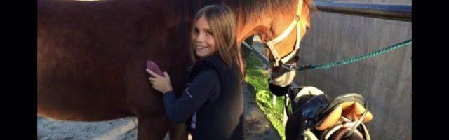 Meine Lieblingsponys/Pferde ❤️?