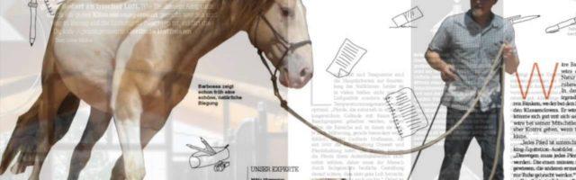 Preview-Video: Mein Pferd 01/2016