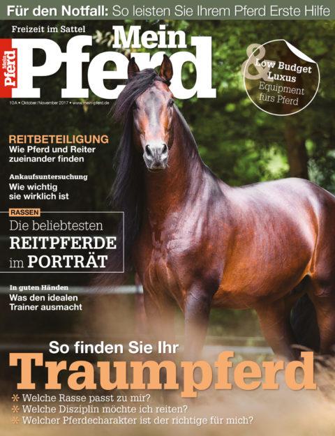 no_issue_year_2017_mein_pferd