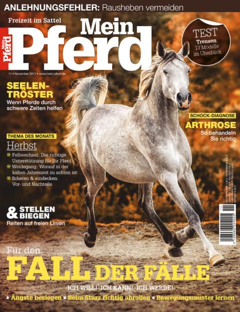 11_2017_mein_pferd