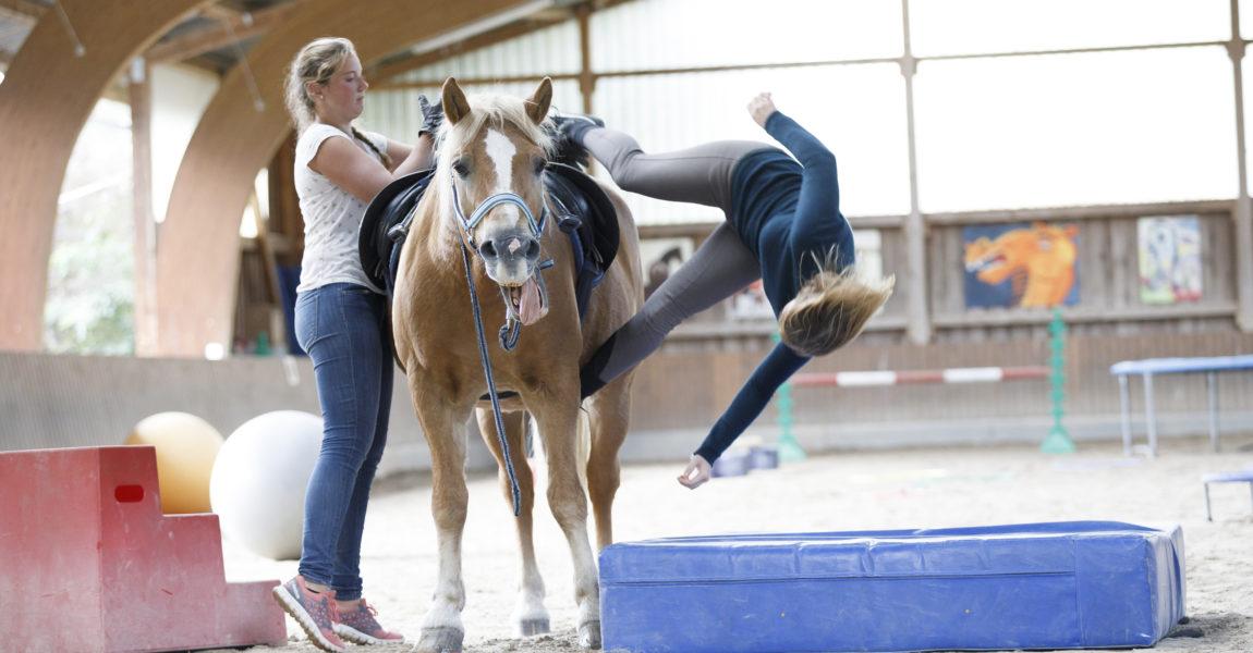 Fallkurs mit Am Wiltrud Heine Der Reiter Fallkurs mit Wiltrud Heine am 17.09.2017 in Ingelheim am Rhein für das Mein Pferd Magazin. Foto: DANIEL ELKE