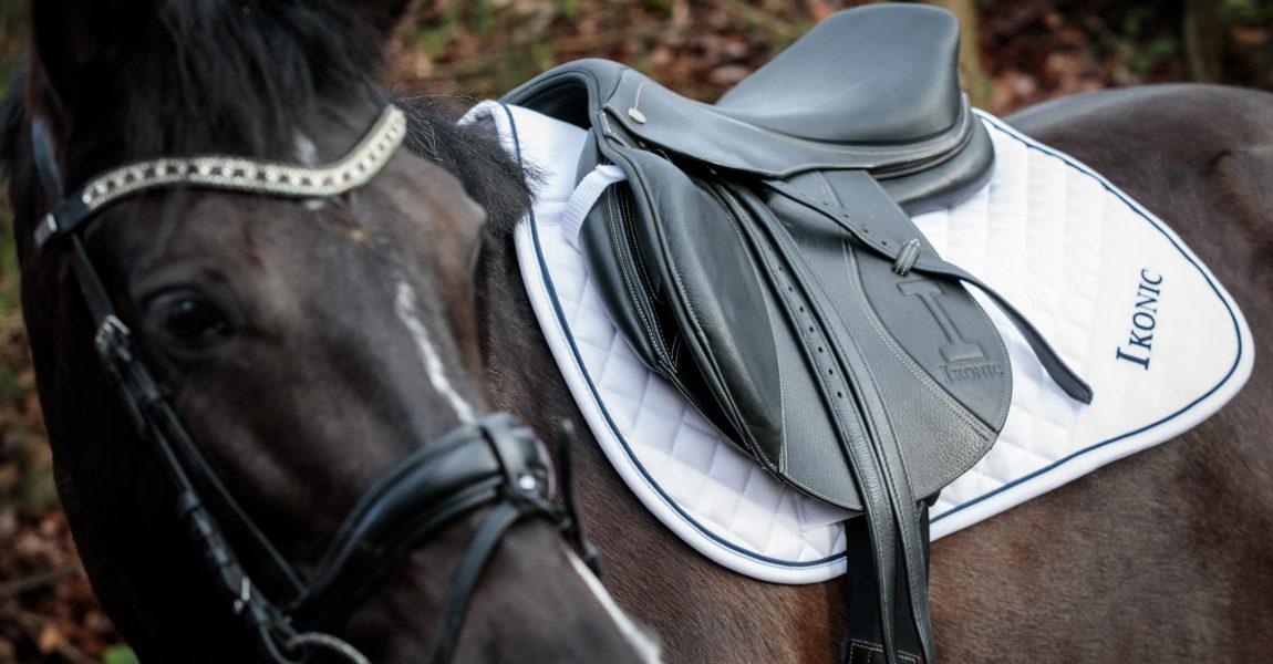 Mein Pferd Gütesiegel Ein Sattel für das Mein Pferd Magazin Gütesiegel. Foto: DANIEL ELKE