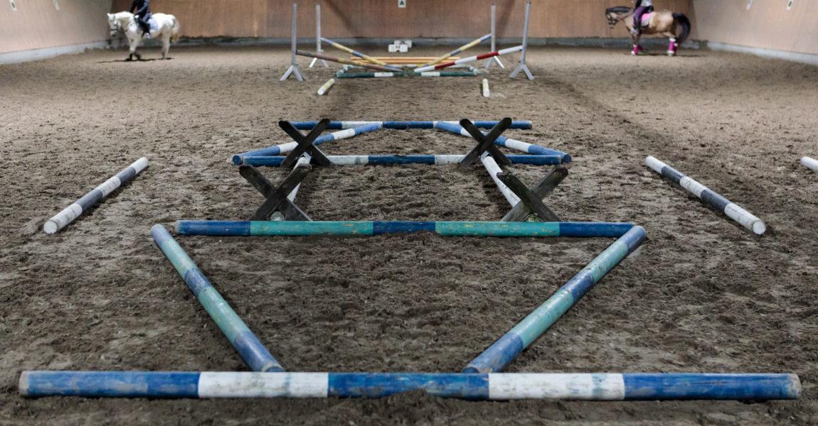 Mein Pferd - Stangentraining Stangentraining für das Mein Pferd Magazin. Foto: DANIEL ELKE