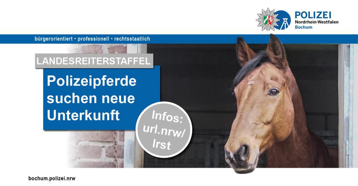 einsatz-startseite-liegenschaft-landesreiterstaffel-180206
