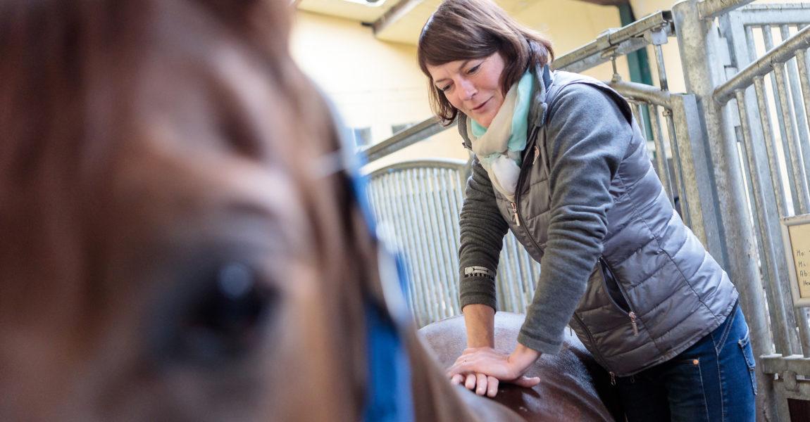 Pferde Chiropraktikerin Simone Kaiser Die Chiropraktikerin Simone Kaiser, behandelt am 06.03.2018 ein Pferd auf dem Gut Waldau in Rheinbach. Fotografiert für das Mein Pferd Magazin. Foto: DANIEL ELKE