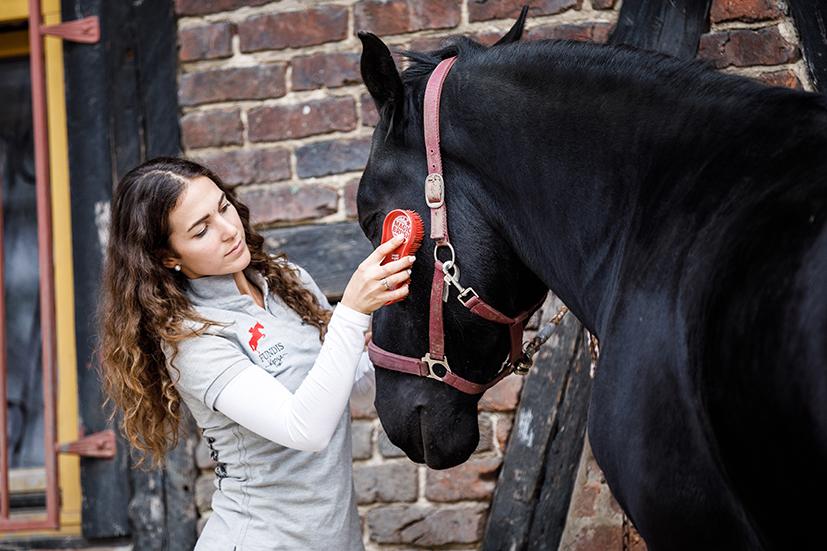 Pferde verschönern mit Kenzie Dysli Kenzie Dysli putzt und verschönert am 17.10.2017 in Ratingen die Pferde des Lengelshof. Foto: DANIEL ELKE