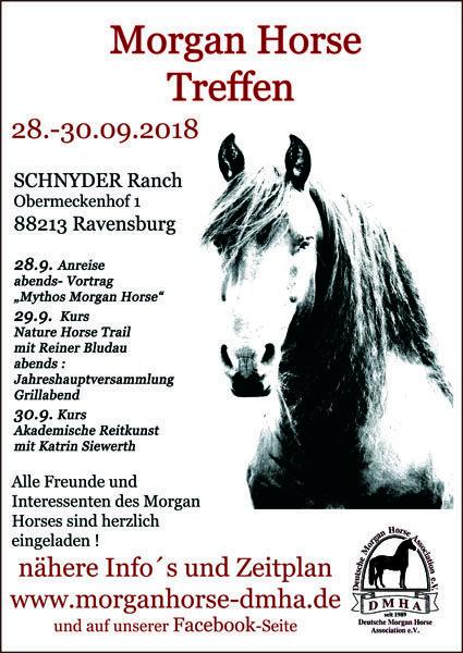 Plakat DMHA 2018