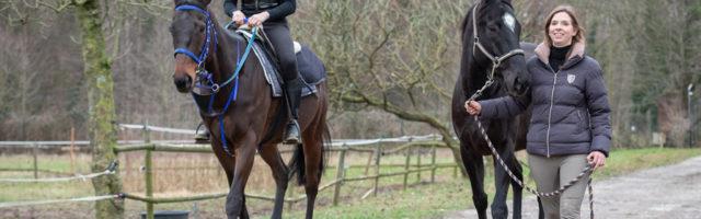Rennpferdehof Mein Pferd Magazin Reportage auf einem Hof für Rennpferde in Weeze Foto: DANIEL ELKE