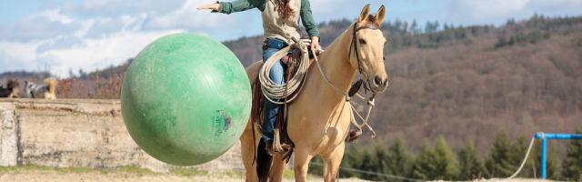 Mein Pferd Magazin - Seven Games Reportage für das MEin PFerd Magazin über die seven Games nach Par Parelli am 18.03.2019.  Foto: DANIEL ELKE