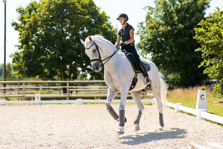 Mein Pferd Magazin - Maike Mende Homestory mit Maike Mende am 13.07.2018 in Altenberge für das Mein Pferd Magazin. Foto: DANIEL ELKE