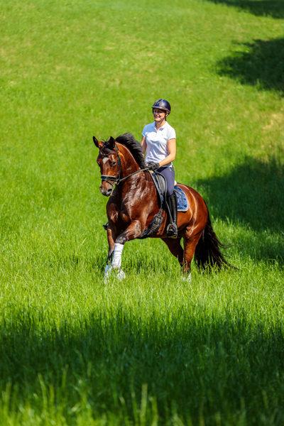Mein Pferd Shooting für das Mein Pferd Magazin am 18.07.2019 in Gevelsberg Foto: DANIEL ELKE
