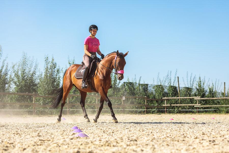Mein Pferd Shooting für das Mein Pferd Magazin am 18.07.2019 in Neuwied Foto: DANIEL ELKE