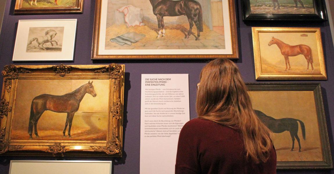 Nr. 5_Entree_Pferde im Seitenbild