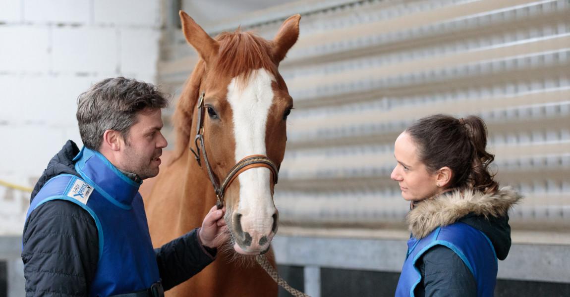 Mein Pferd Shooting für das Mein Pferd Magazin am 12.04.2019 in Gevelsberg Foto: DANIEL ELKE
