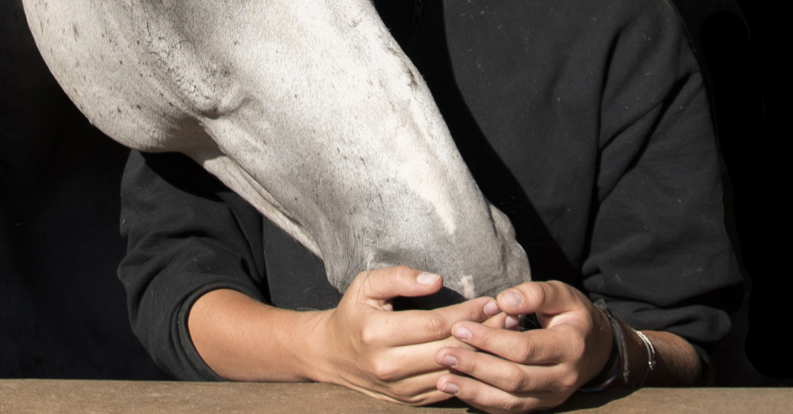 Young Woman By Horse Against Black Background Photo taken in Johannesburg, South Africa