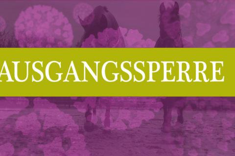 www.mein-pferd.de