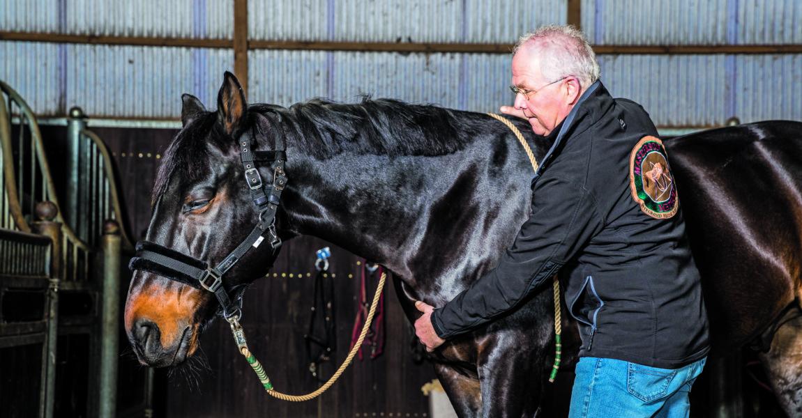 Pferdesport-Therapie 18-40-d200-Pferdetherapie- 2018-12-21- 10:19:36h- Pferdetherapie -Hamburg-Pensions- und Ausbildungsstall Düpenautal-Deutschland,