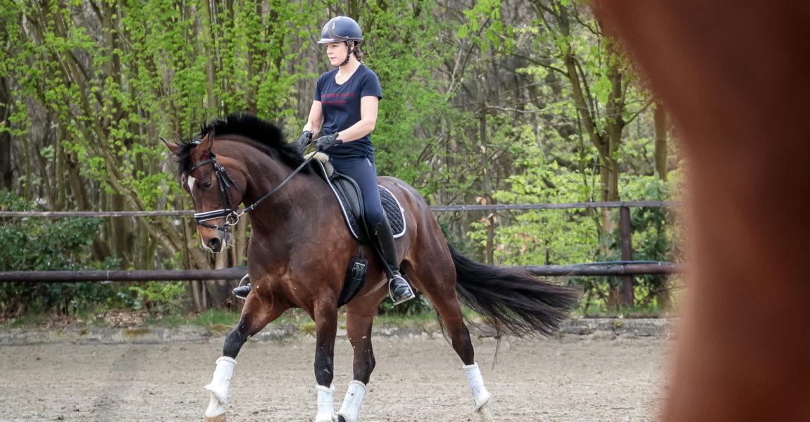 Mein Pferd Magazin - Serie Berufe - Bereiterin Die Bereiterin Verena am 16.04.2018 in Gevelsberg bei der Arbeit. Für das Mein Pferd Magazin. Foto: DANIEL ELKE