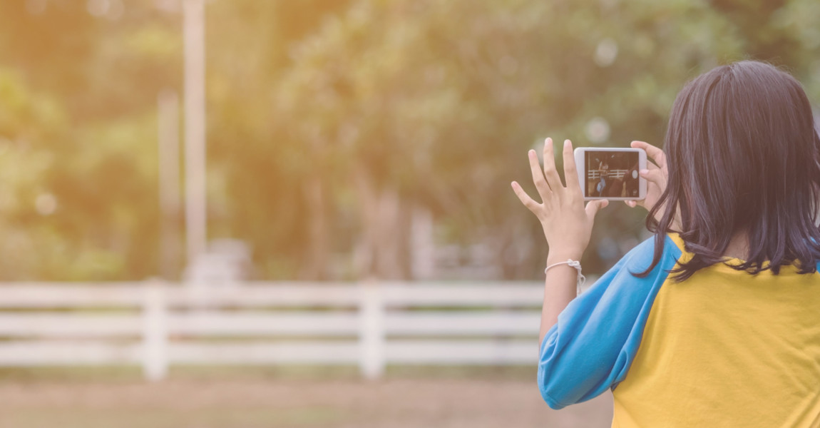 Girl in yellow and blue shirt use smartphone to take photos at the horse riding field in the evening. Girl in yellow and blue shirt use smartphone to take photos at the horse riding field in the evening.