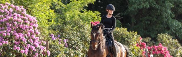 Mein Pferd Shooting für das Mein Pferd Magazin am 20.05.2020 in Gevelsberg Foto: DANIEL ELKE