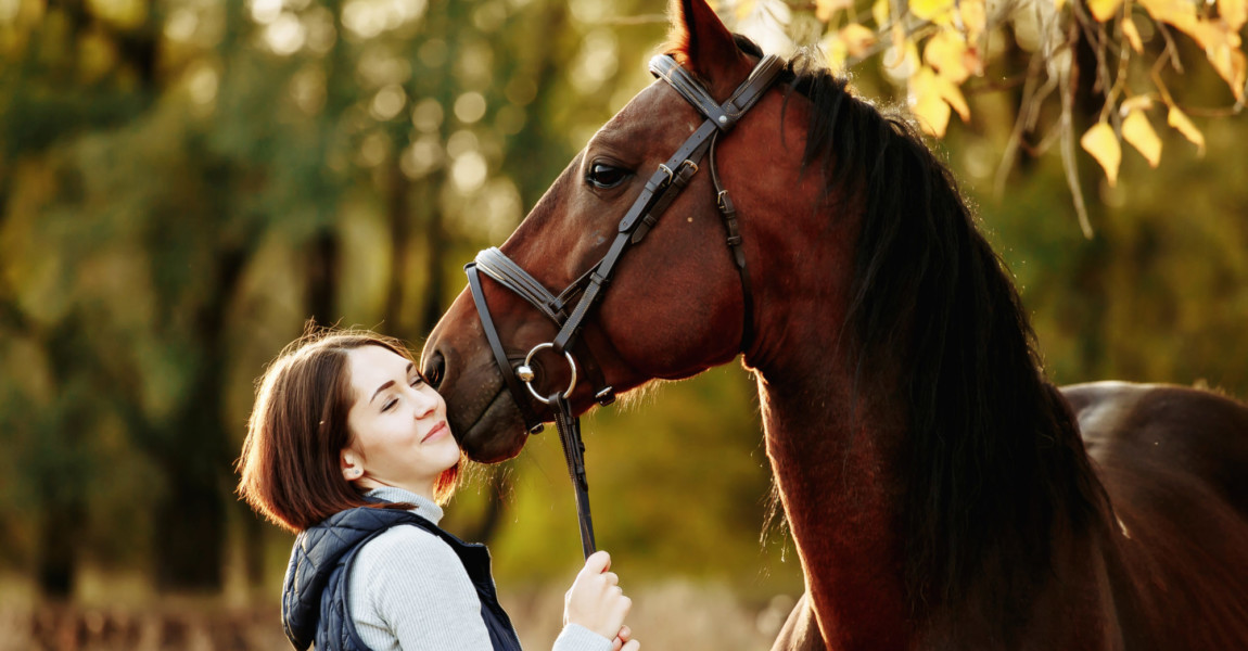 Woman with her horse at sunset, autumn outdoors scene Woman with her horse at sunset, autumn outdoors scene