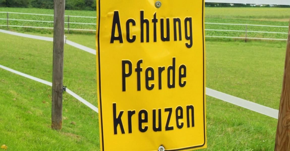 Warnung vor Pferden, die den Weg kreuzen. Warnschild vor Pferden, die den Weg kreuzen. Köln, Nordrhein-Westfalen, Deutsc Warnung vor Pferden, die den Weg kreuzen. Warnschild vor Pferden, die den Weg kreuzen. Köln, Nordrhein-Westfalen, Deutschland, 19.08.2019. *** Warning of horses crossing the road Warning sign for horses crossing the road Cologne, North Rhine-Westphalia, Germany, 19 08 2019 Copyright: JOKER/HelmutxMetzmacher JOKER190819582522