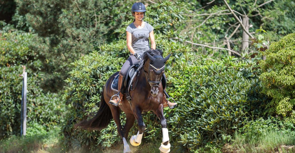 Mein Pferd Magazin - Satteltest. Foto: DANIEL ELKE Mein Pferd Magazin - Satteltest. Foto: DANIEL ELKE