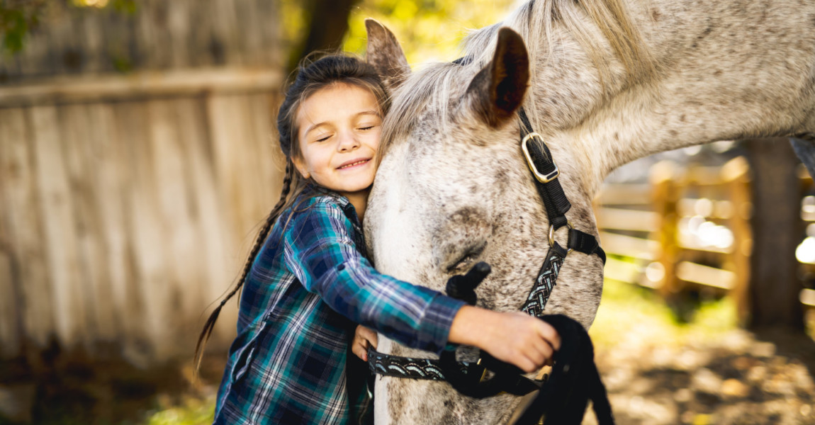 in a beautiful Autumn season of a young girl and horse A beautiful Autumn season of a young girl and horse