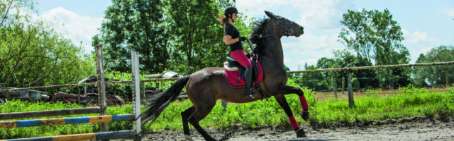 Pferdesport und Pferdepflege ILLUSTRATION - Ein Pferd mit Reiterin scheut am 13.06.2019 in Achim wegen eines Feldhasen (gestellte Szene). Foto: Christin Klose    Modellfreigabe vorhanden
