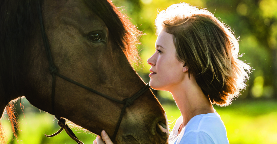 Profiles of young woman and horse at backlight model released Symbolfoto property released PUBLICATI Profiles of young woman and horse at backlight model released Symbolfoto property released PUBLICATIONxINxGERxSUIxAUTxHUNxONLY TCF05422 profiles of Young Woman and Horse AT back light Model released Symbolic image Property released PUBLICATIONxINxGERxSUIxAUTxHUNxONLY TCF05422