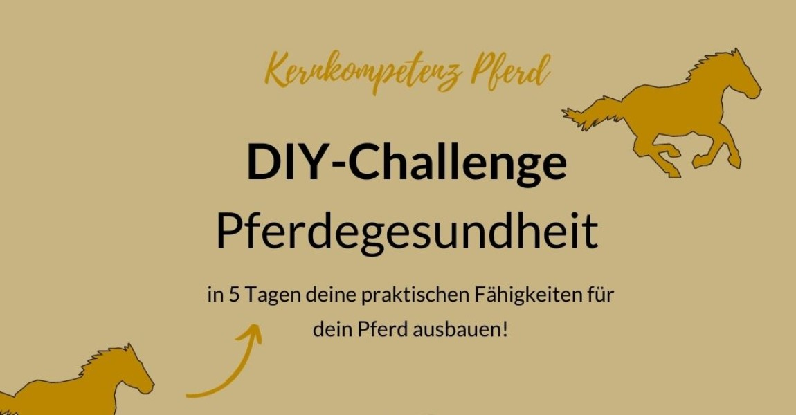 DIY-Challenge Ad1