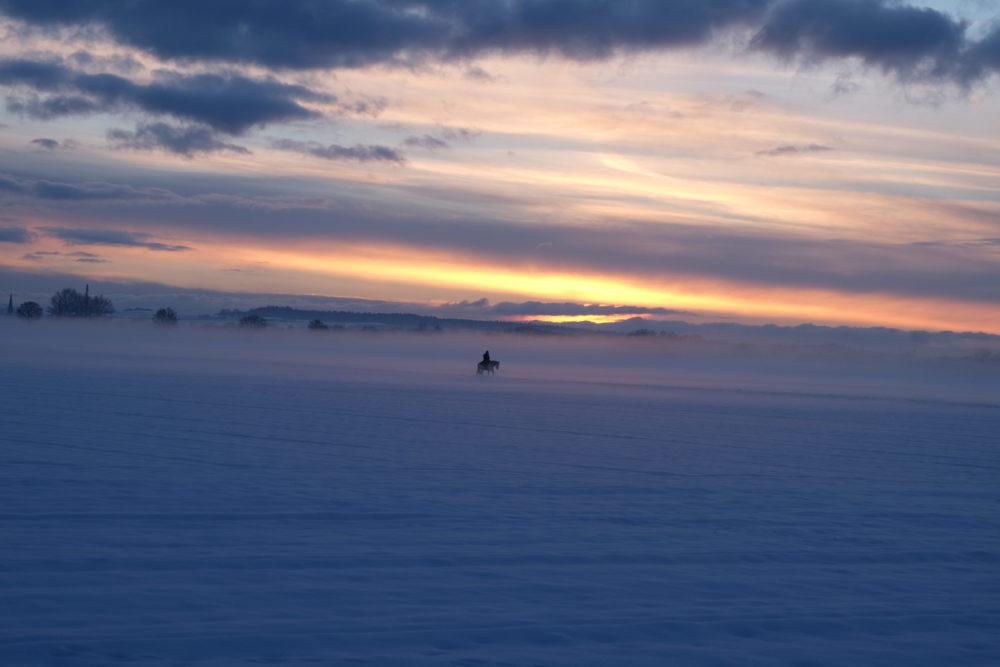 Nebelreiter im Sonnenuntergang