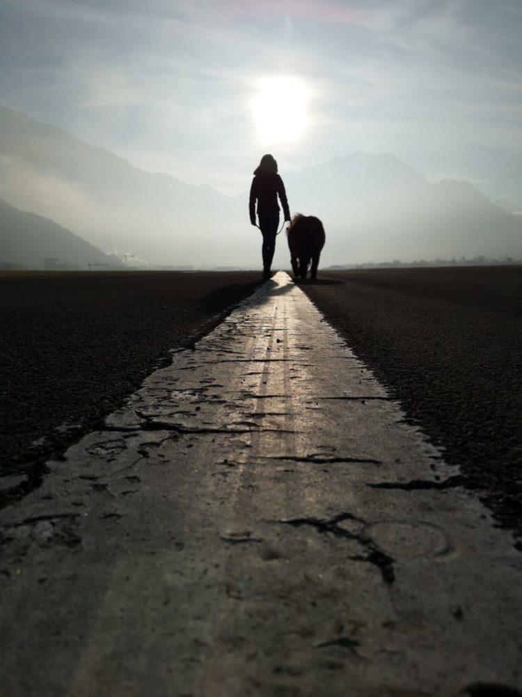 Der beste Weg, ist der Weg mit dem Pferd
