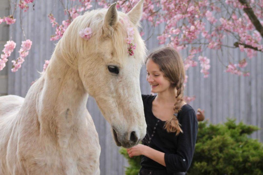 Die Seele eines Pferdes ist wie der Duft einer Blume💞Dessy💞