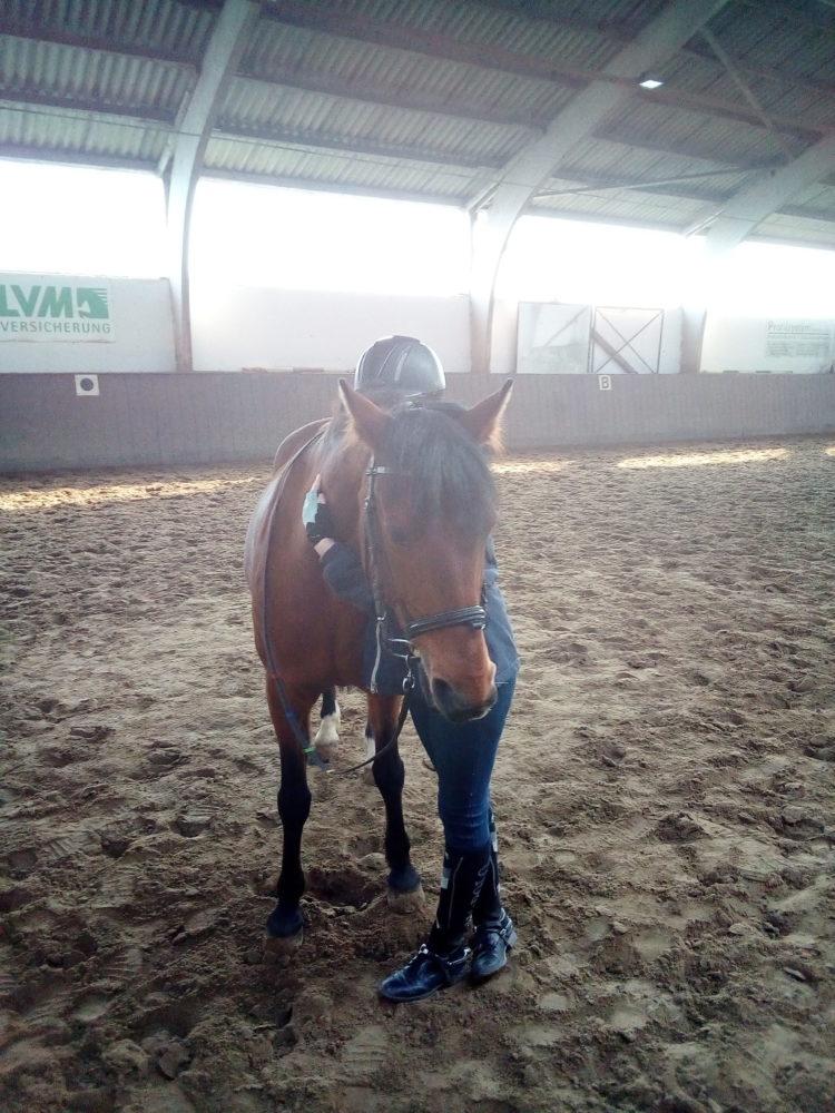 Pony Mogli und Ronja. Ein Herz und eine Seele.