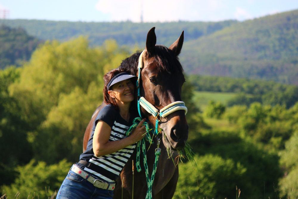 Die wesentliche Freude mit Pferden zusammen sein: Es bringt uns in Kontakt mit Anmut, Schönheit und Lebensenergie.