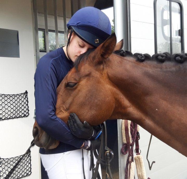 Mein Pferd - mein Freund
