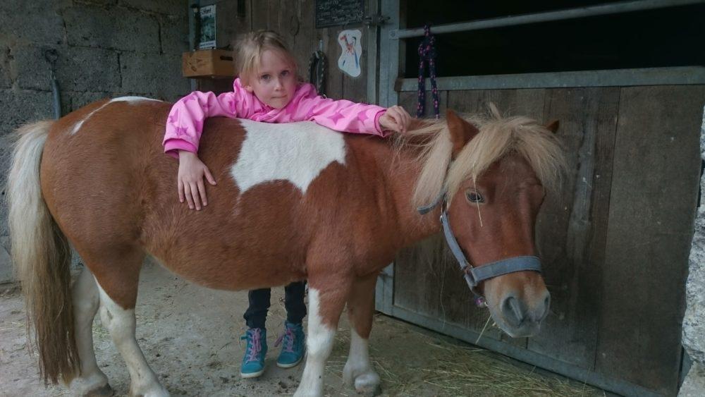Ponyglück