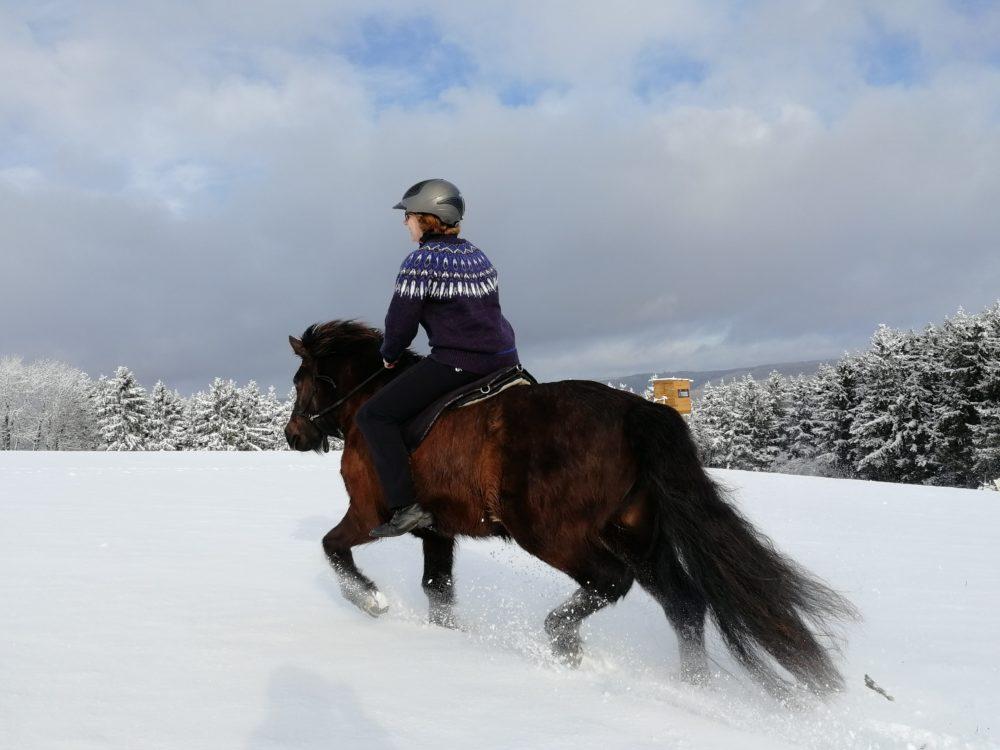 Spaß im Schnee mit ISI-Power ... 1 PS und 5 Gänge :-)