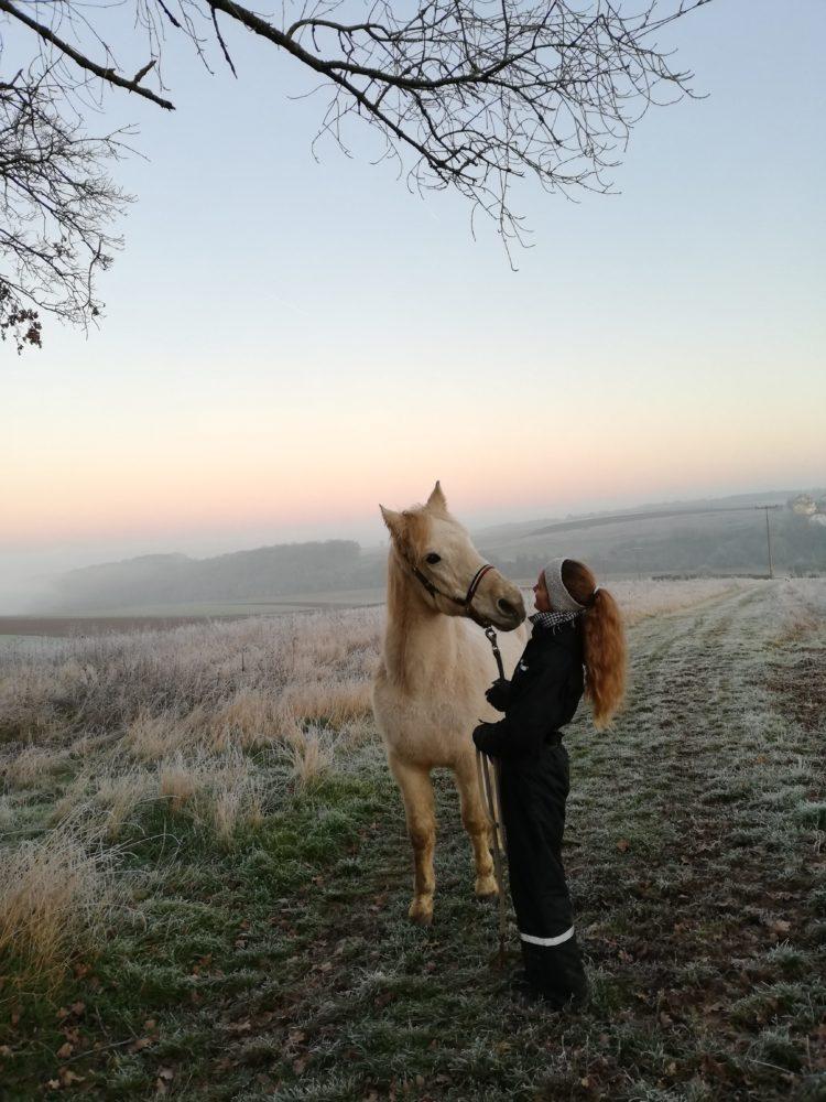 🌠Wenn du deinem Pferd in die Augen schaust, dann blickst du in seine Seele🌠