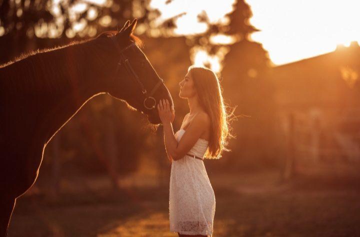 Mein Seelenpferd ♡