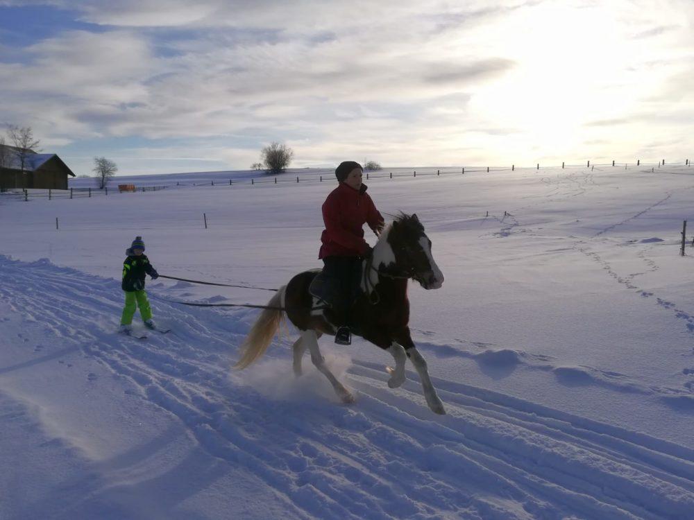 Winterspaß mit Merlin