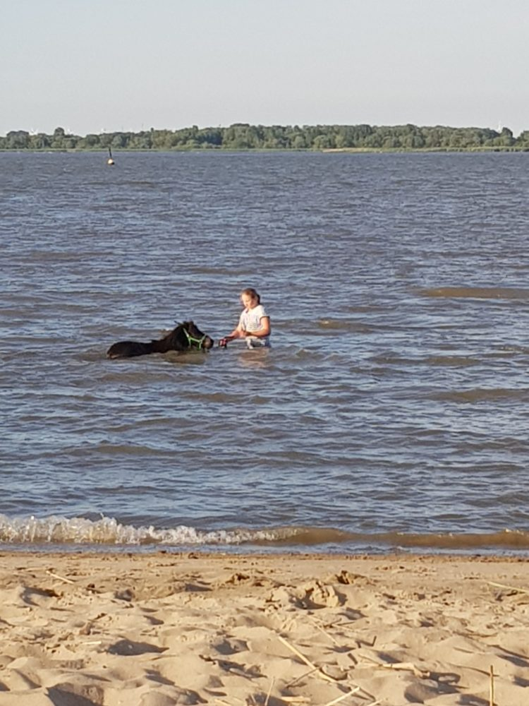 Gemeinsam in der Elbe baden