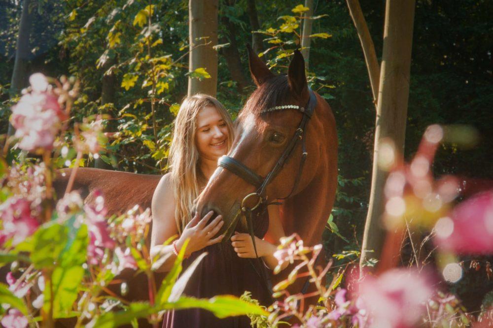 Vertrauen zwischen Pferd und Mensch