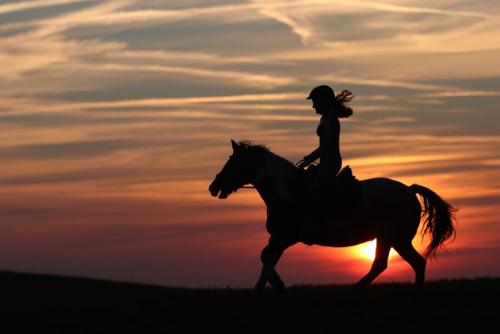 Ein Pferd zu reiten, das ist wie Fliegen ohne Flügel