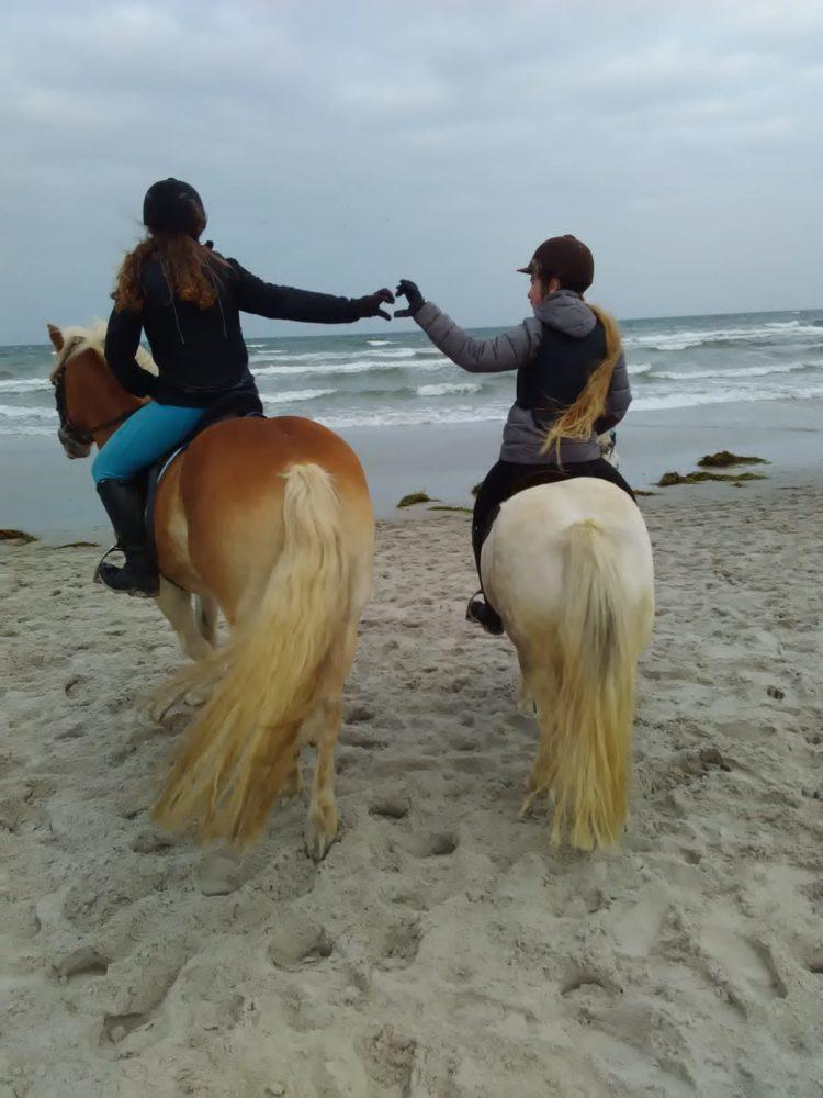 Ein gemeinsamer Ritt am Strand!😙❤