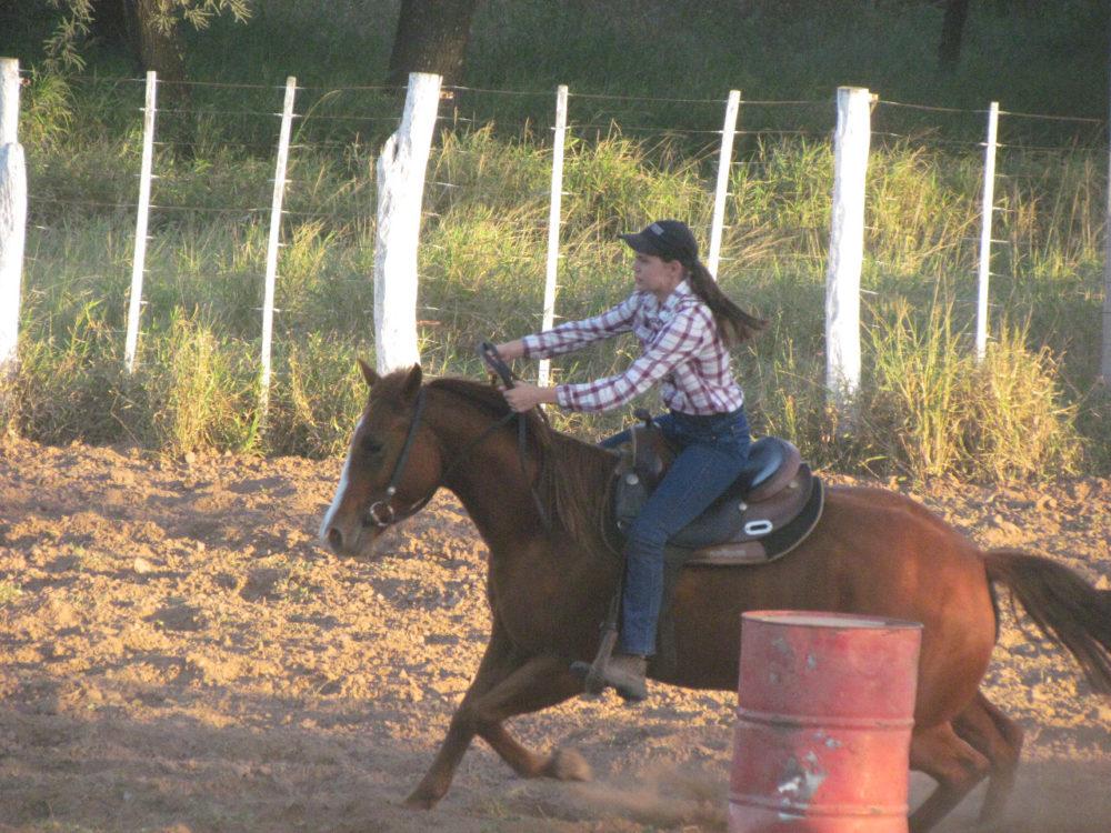 Ein Pferd kann dir alles brechen, außer dein Herz 🥰🤠❣