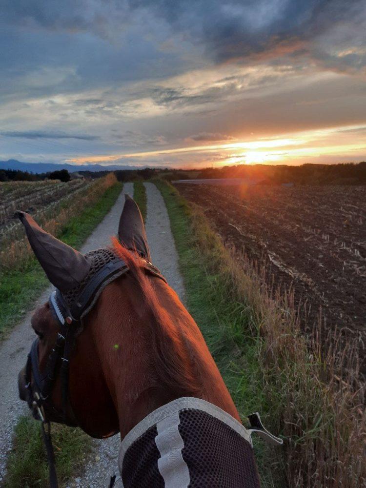 Ein traumhafter Ausritt in den Sonnenuntergang